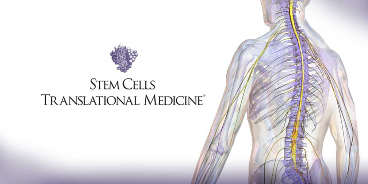 Study Is First to Indicate Impact of Donor Age on Stem Cell Therapy for Spinal Cord Injuries