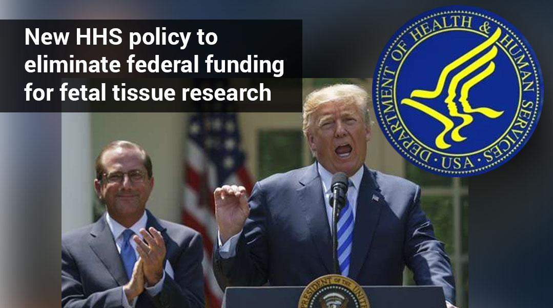 ISSCR Opposes Health and Human Services Policy Restricting Fetal Tissue Research