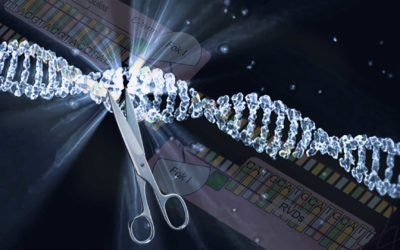 The Alliance for Regenerative Medicine Releases Statement of Principles on Genome Editing