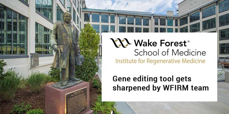 Gene editing tool gets sharpened by WFIRM team