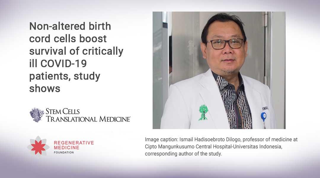 Non-altered birth cord cells boost survival of critically ill COVID-19 patients, study shows